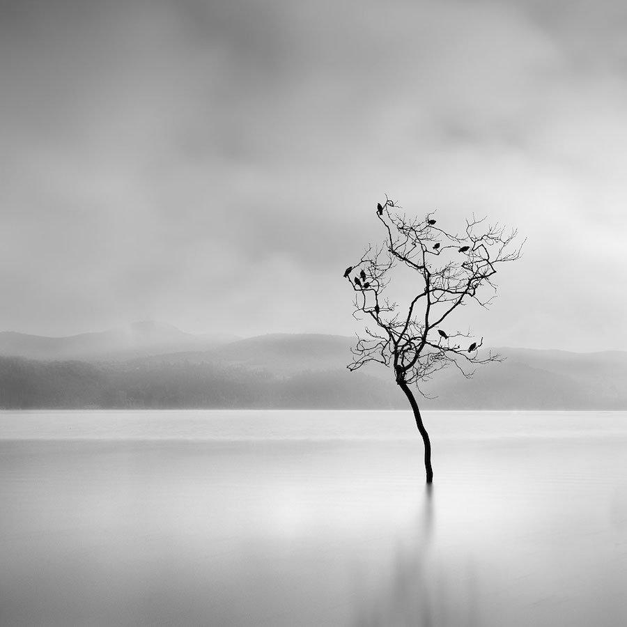 EL reflejo de la fotografía minimalista de George Digalakis