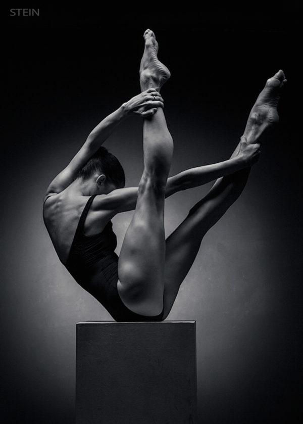 Retratos en blanco y negro de bailarines elegantes