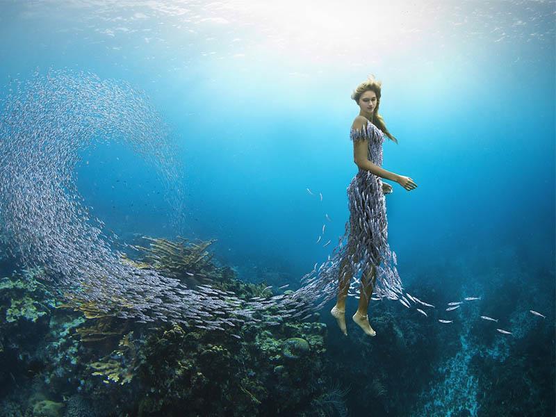 La asombrosa fotógrafa de moda surrealista, Miss Aniela