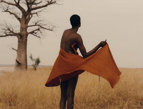 Árbol de la fotógrafa Charlotte  revela a Senegal Historias no contada